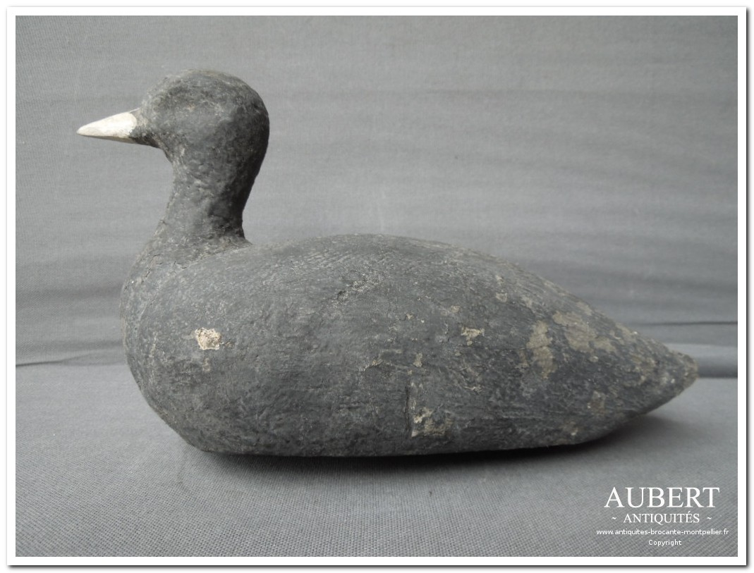 appelant poule d'eau chasse a l'eau origine bassin de thau achat antiquites achat brocante vente antiquites vente brocante antiquaire sete antiquaires montpellier brocanteur montpellier brocanteur sete succession debarras antiquites aubert montpellier fabregues sete beziers gigean antiquaire aubert brocante aubert brocanteur aubert